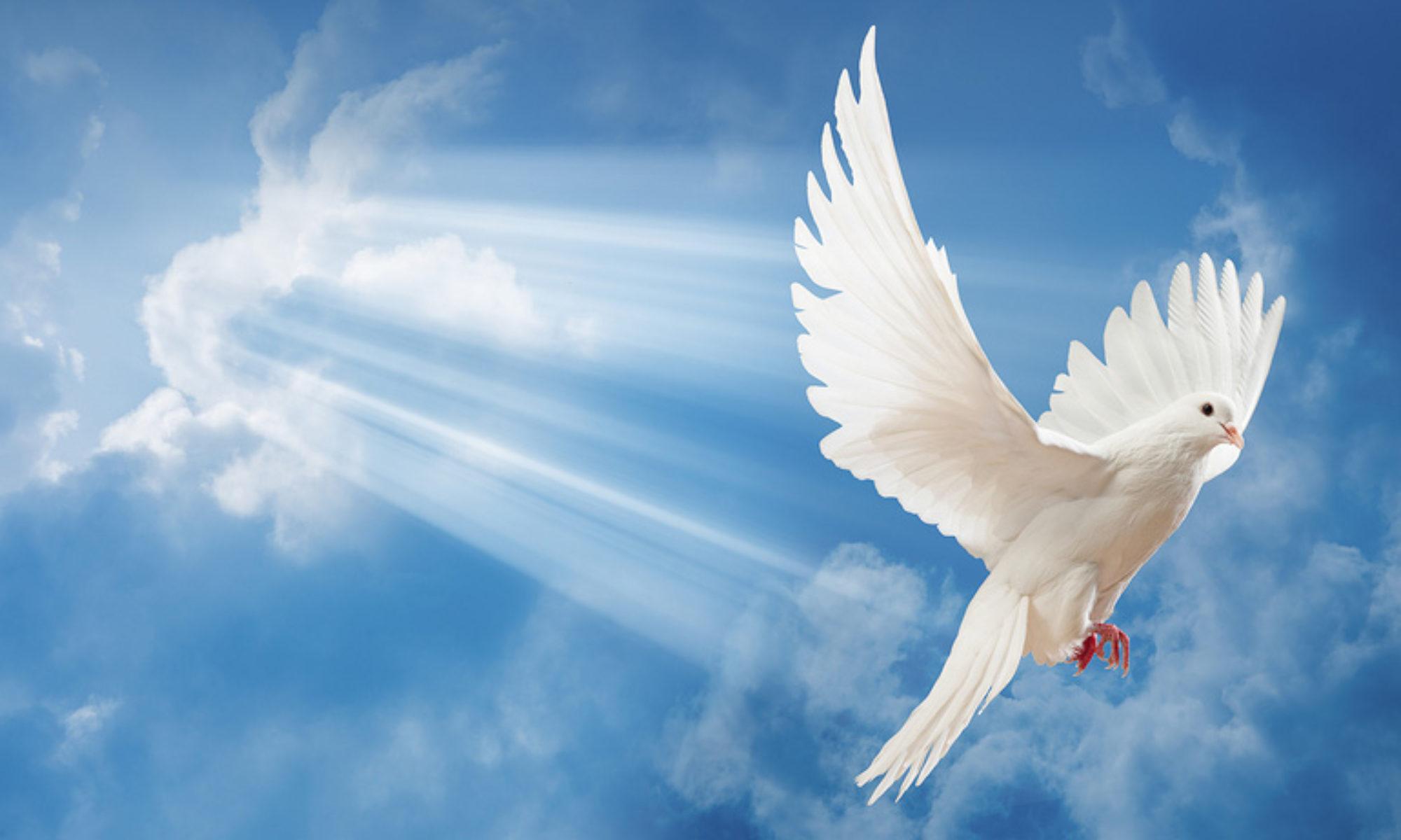 Heilungsdienste im Heiligen Geist
